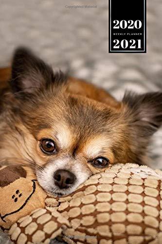 Chihuahua Dog Pup Puppy Doggie Week Planner Weekly Organizer 2020 / 2021...