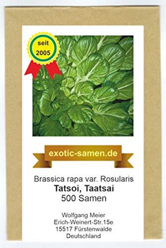 Asia Gemüse - Tatsoi - Taatsai - Rosetten-Pak Choi - 500 Samen