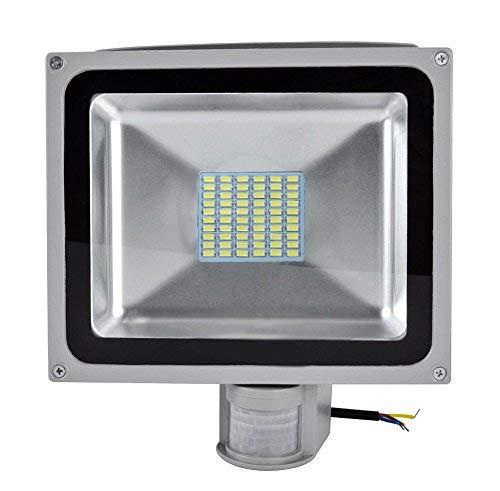 Greenmigo 20W 30W 50W 80W SMD Fluter mit Bewegungsmelder LED Strahler Kaltweiß kaltweiss Licht IP65 Wasserdicht LED Lampe Wandleuchter Flulicht Flutbeleuchtung LED Gartenlampe Außenstahler
