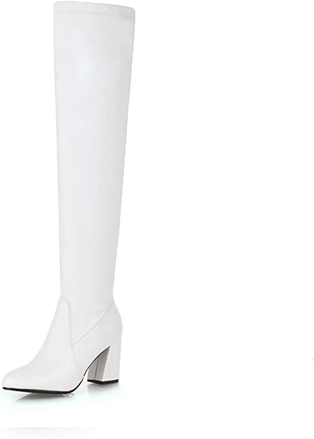 Women Over The Knee Boots Thick High Heels Pointed Toe Slip On Plush Warm Winter Sexy Cool Riding Long Boots