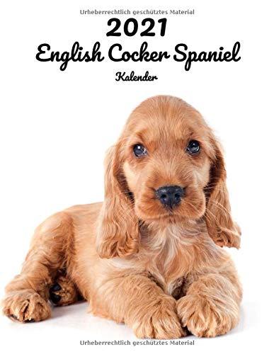 2021 English Cocker Spaniel Kalender: 123 Seiten, DIN A4 | 14 Monate Kalender | Terminplaner | Tagebuch | Terminkalender | Organizer für Hundeliebhaber