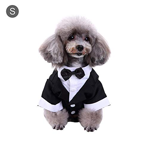 soundwinds Disfraz de Mascota Traje de Perro de Lazo Corbata ...