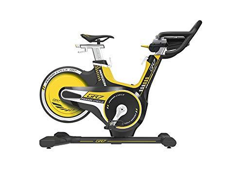 Horizon Fitness Indoor Cycle GR7 - Bicicleta estática