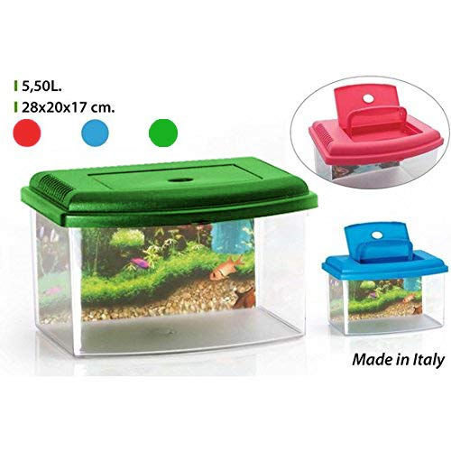 GEORPLAST Acuario con Tapa 5,5 litros - Color