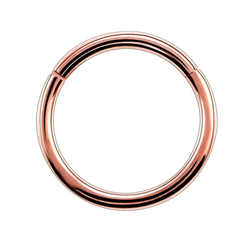 KEHUITONG PSWK 1PC Titanium Hinged Segment Nose Ring ;Nipple Ear Cartilage Tragus Helix Lip Piercing Unisex Fashion Jewelry (Main Stone Color : 1.2x6mm, Metal color : Rose Gold)