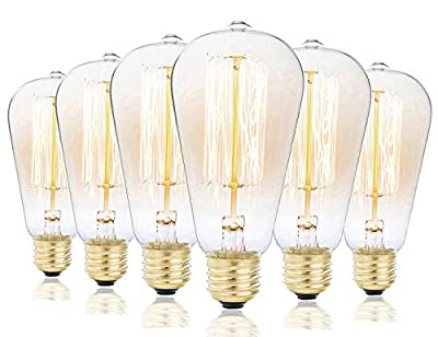 Rolay 25 Watt Vintage Edison Light Bulb with Squirrel Cage Filament, 110~130 Volts, E26 Base, 70 Lumens