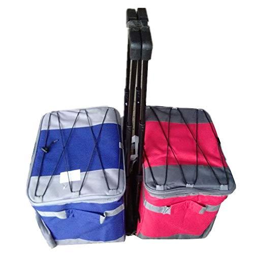Sacs à dos de pique-nique Draw-bar multifonction Ice Bag sac de pique-nique de voyage camping en plein air barbecue pêche sac frigorifique pour camping familial en plein air ( Color : Blue )