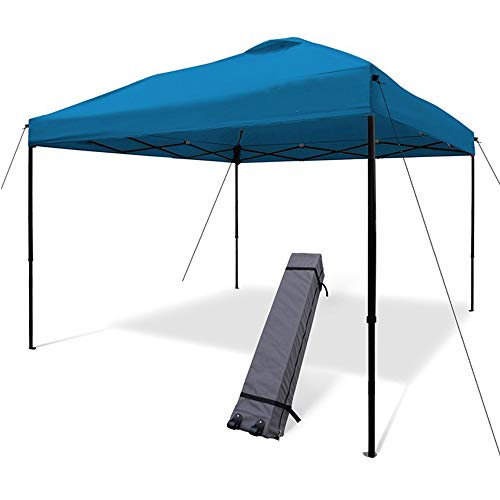 JNYB 10'x10' Pop Up Canopy Tent Commercial Instant Shelter for Garden/Beach/Instant Shelter/Flea Market with Heavy Duty Roller Bag