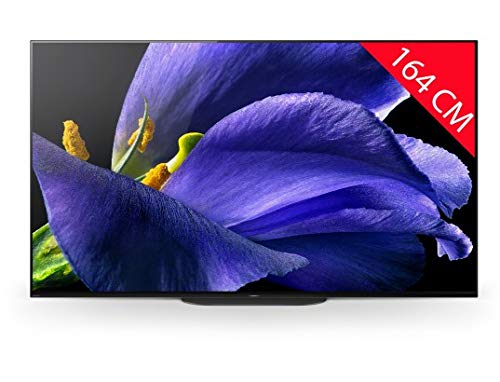 Televisore OLED Sony KD65AG9