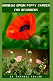 GROWING OPIUM POPPY GARDEN FOR BEGINNERS: Step By Step Guide For Growing The medicinal Plant From Seed To Harvest