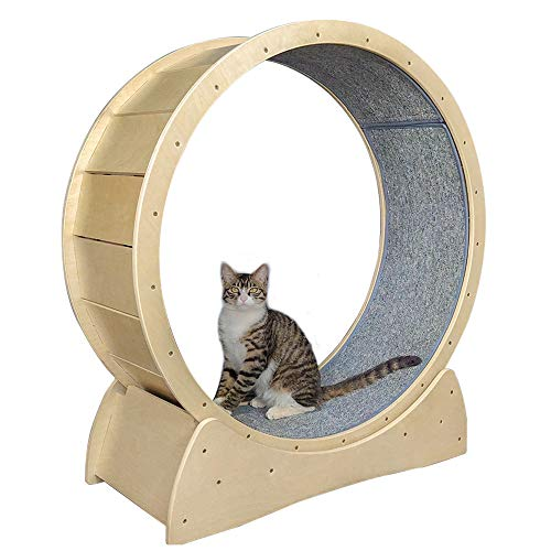 Large Solid Wood Cat Exercise Wheel Roller Pet Special Sports Weight Loss Device Mute Stable Maximum Load-Bearing 176 Lbs Diameter 91cm