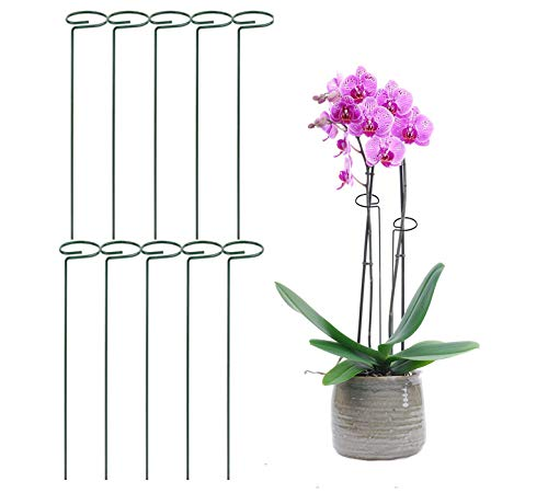 MTB Green 36 inch Single Stem Plant Stakes Flower Support Rings, Pack of 10