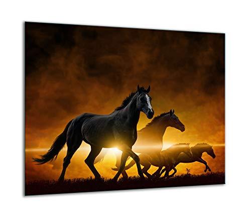 TMK   Herdabdeckplatte 60x52 Einteilig Glas Elektroherd Induktion Herdschutz Spritzschutz Glasplatte Deko Schneidebrett Schawarz Pferd