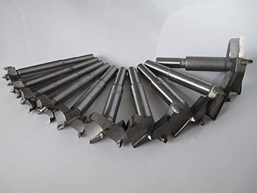 GYW-YW Drorn bit 10PC 14-50mm Forstner mordió Accesorios de la Herramienta rotativa de Grupo de perforación Plataforma de perforación de la carpintería Orificios de la bisagra giratoria de Ventana de