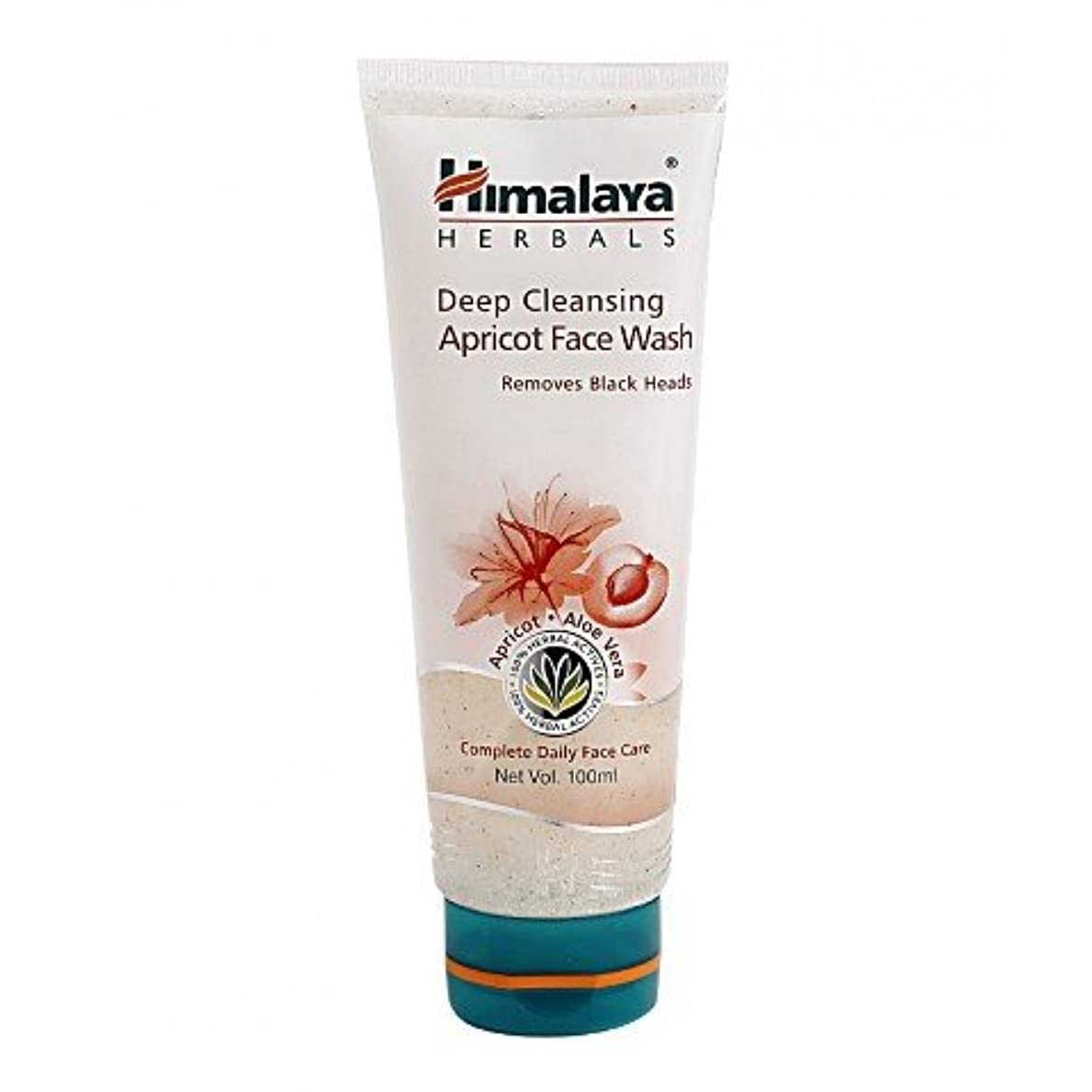 依存する雪のチートHimalaya Gentle Exfoliating Daily Face Wash 100gm