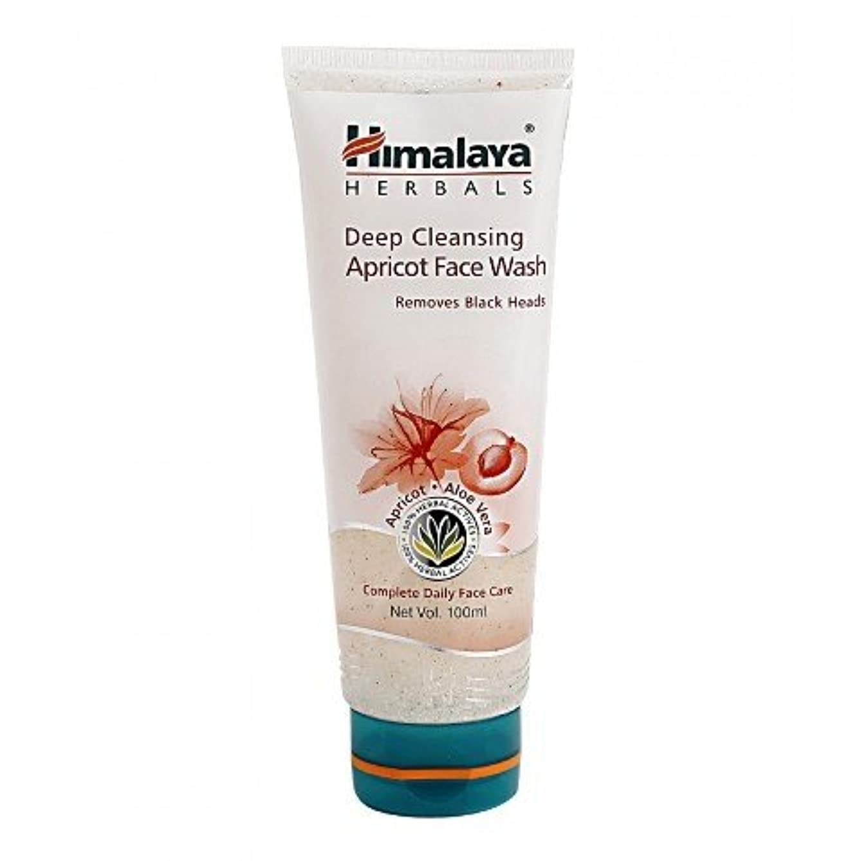 忌み嫌う酸肥満Himalaya Gentle Exfoliating Daily Face Wash 100gm