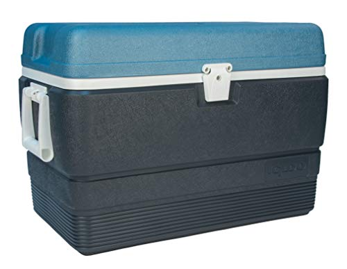IGLOO Outdoor Maxcold Kühlbox, Blau, 36 Liter