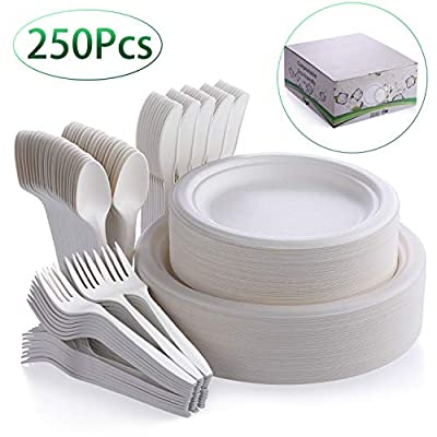 Fuyit 250Pcs Disposable Dinnerware Set, Compostable Sugarcane Cutlery Tableware Includes 50 Biodegradable Paper Plates, Forks, Knives and Spoons Combo for Party, Camping, Picnic