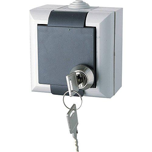 GAO EFO600G/K Feuchtraum-Schalterprogramm Schutzkontakt-Steckdose abschließbar Business-Line Grau