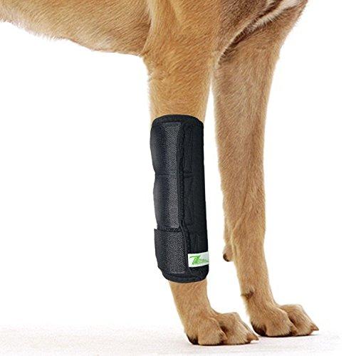 Tutore Ortopedico Dog Hock Brace per Il Garretto Anteriore Canino (L/XL)