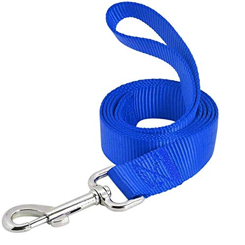 AEDILYS Dog Leash,Strong and Durable Traditional Style Leash with Easy to Use Collar Hook,Nylon Dog Leashs, Traction Rope, 6 Feet Long, (Blue, 3/5 inch X 6FT)