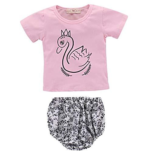 Borlai 2PCS/Set Baby Girls Summer Casual Outfits Set Cute T-Shirt + Shorts