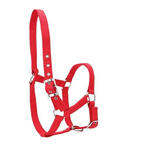 YOUTHINK Cabestro de Caballo Alta Densidad 6 Mm Cincha Engrosada Brida de Caballo Control Halter Accesorios para Montar Color Rojo