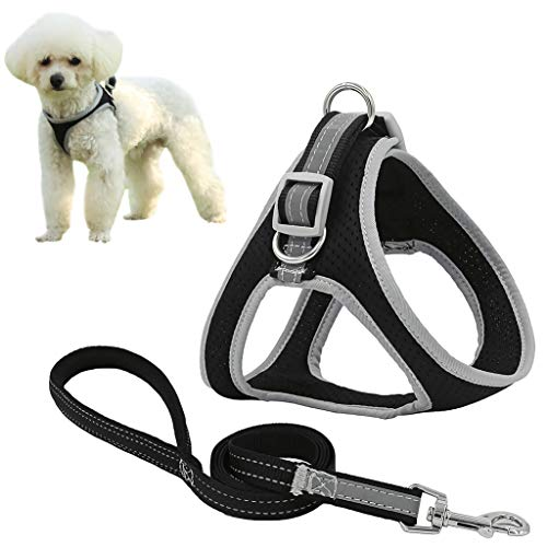 risdoada Atmungsaktives weiches Mesh Hundegeschirr mit Leine, verstellbares No Pull Welpenweste Geschirr, mittelgroße und große Hunde im Freien, Schwarz M