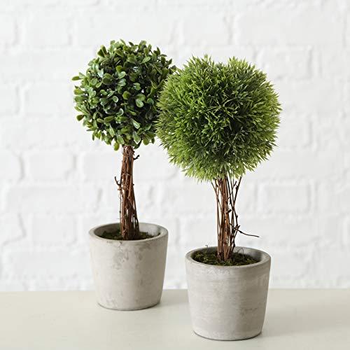 mucplants 2er Set künstliche Pflanzen im Zementtopf Höhe ca. 30cm mit Echtholzstamm Deko Tischdeko Buchsbaum