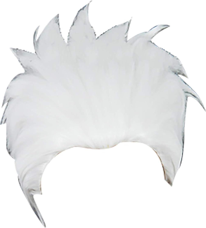 Coser Cosplay Wig for Fate Grand Order Emiya Archer