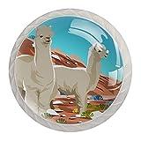 Perillas de vidrio con patrón de alpaca para cajones de aparador, pomos de cristal, tiradores de armario, con kit de hardware para dormitorio, muebles de cocina, armarios