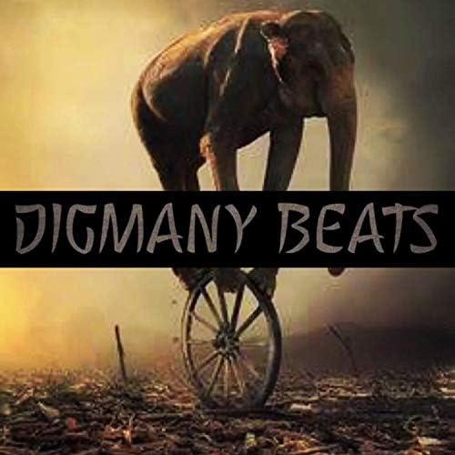 Digmanybeats