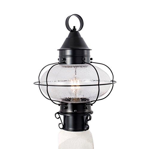 Norwell Lighting Medium Single Light Cottage Onion -1321-BL-SE Black with Seedy Glass