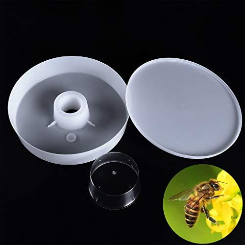 Xuways Plastic Rapid Bee Water Feeder, Beekeeper Beekeeping 4 Pint 2L Rapid Bee Hive Feeder Keeping Equipment Tool,Beekeeping Supplies (White)