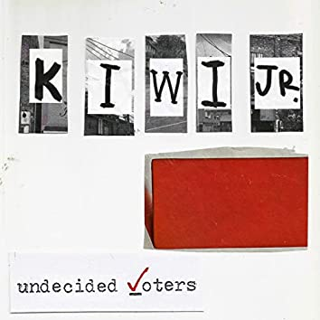Undecided Voters
