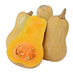 Harvest in about 110 days Seeds are Non-GMO, easy to grow and hand packed by David's Garden Seeds in the United States The flesh is smooth-textured and has a unique sweet flavor, particularly after 2 months' storage Light tan-colored winter squash wi...