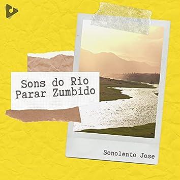 Sons do Rio Parar Zumbido