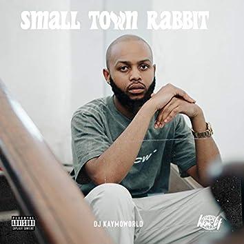Small Town Rabbit