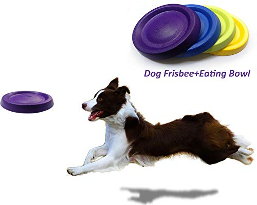 Briller Dog Frisbee Float Dog Flying Disc Dog Toys Pet Training Outdoor Spielzeug Hund Wurf und Apportierspielzeug