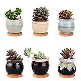 Wisolt Vaso Bonsai Ceramica, Set di 6 Vasi per Piante Grasse con Foro di Scarico per Piante Aromatiche in Casa(Vassoio escluso)