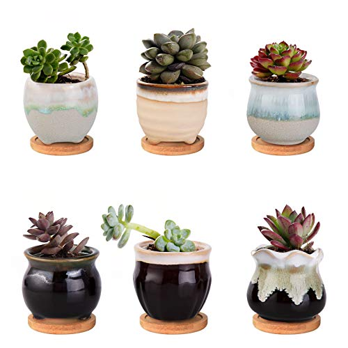 Wisolt Keramischer Sukkulententopf, Blumentopf, rund, Sukkulenten und Kaktus, Ton Pflanzgefäß mit Ablaufloch und mit Untertasse für Heim Büro Dekoration, 6er-Set