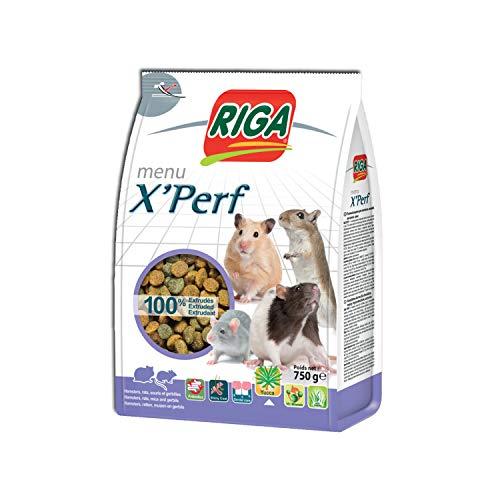 Riga Nourriture Menu X'Perf pour...
