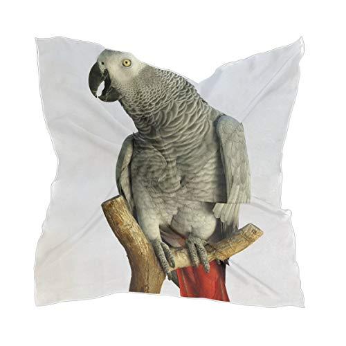 XiangHeFu Bufanda de seda ligera Tocado Un loro gris africano del Congo Pañuelo transparente Pañuelo de gasa