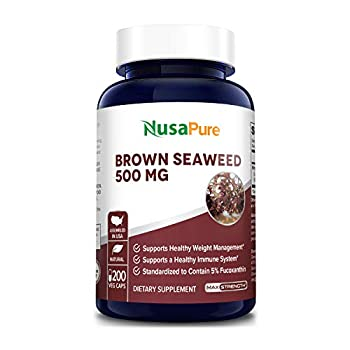 Brown Seaweed Extract 500mg - 200 Veggie Capsules- 200 Day Supply  100% Vegetarian Non-GMO & Gluten Free  - Fucoidan - Supports Healthy Immune System*