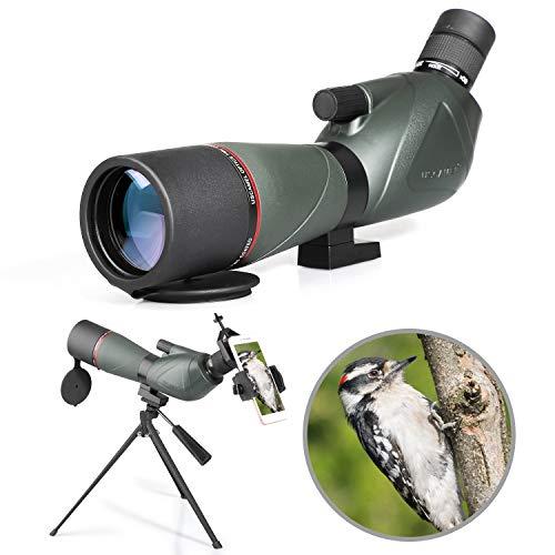 Spotting Scope 20-60X60 Telescopio monocular impermeable Birdwatching HD con adaptador de teléfono + trípode para tiro con arco, Safari Sightseeing, Stargazing, Camping