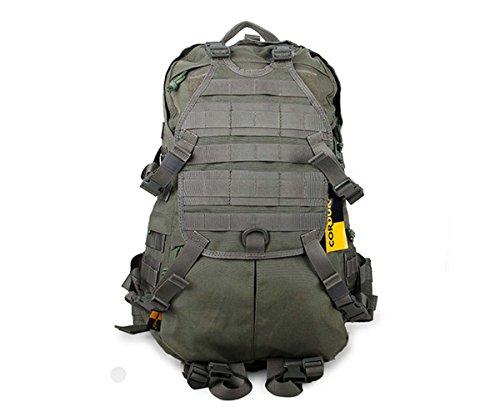 Canis Latrans Tactical Assault Molle Backpack Camping Hiking Trekking Bag Grey