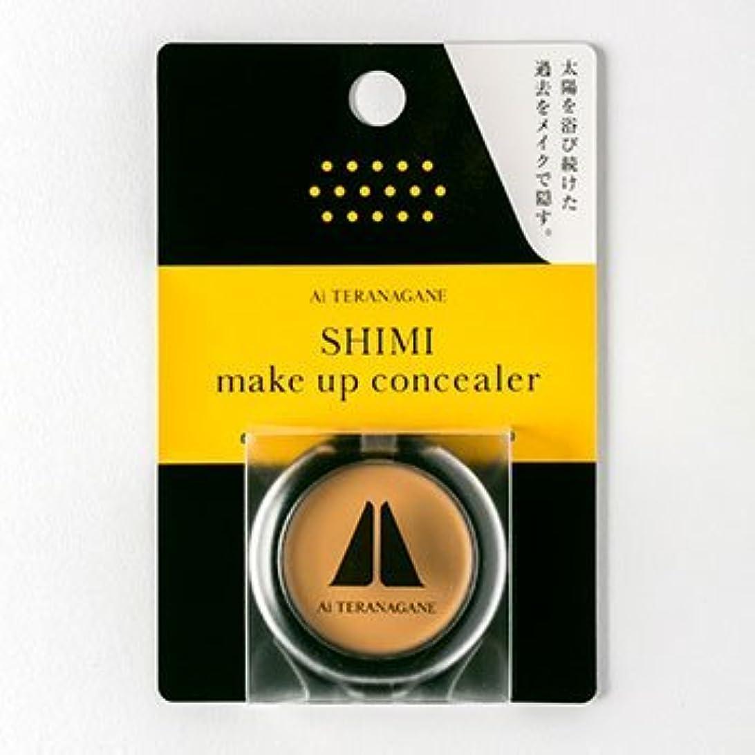 ライバル掻く排他的Ai TERANAGANE SHIMI make up concealer シミ消しコンシーラー