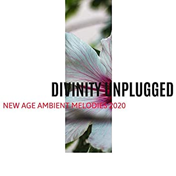 Divinity Unplugged - New Age Ambient Melodies 2020