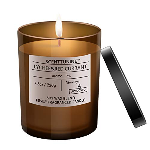 Scenttunine Scented Candle, Pure Natural Organic Soy Wax Candle Jar 40h Burn Time Aromatherapy Fall Candles for Home Scented Essential Gift Ideas - Lychee&RED Currant 7.8OZ