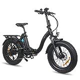 DERUIZ Amber Bicicleta Eléctrica Plegable 20'*4.0 E-Bike MTB Pedal Assist, Batería de Litio 48V 13Ah, Bicicleta Eléctrica para Adultos 500W, Shimano 7 Velocidades, Bici eléctricas de Off-Road Fat